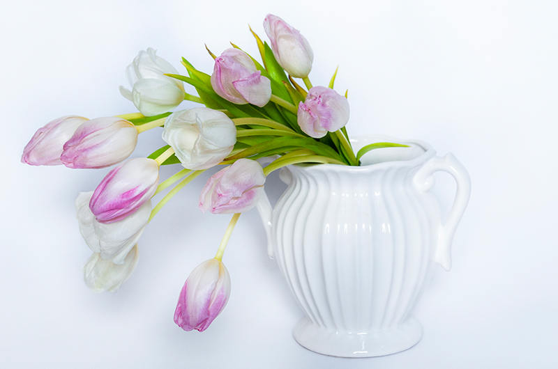 Violet tulip Flower Bouquet - Spree Designs